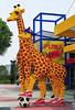 Lego giraffes