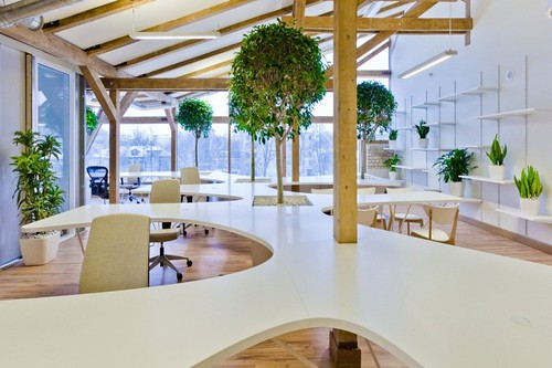 office-greenhouse-01-800x533