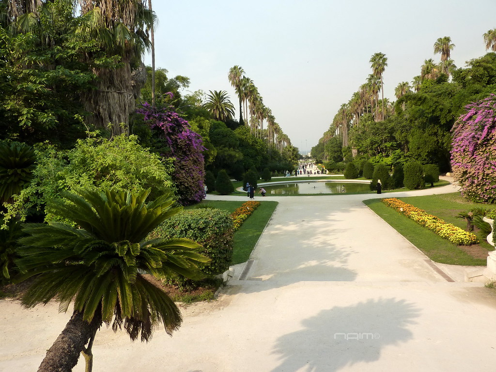 El hamma garden 1832 algiers page 15 skyscrapercity for Jardin d essai alger