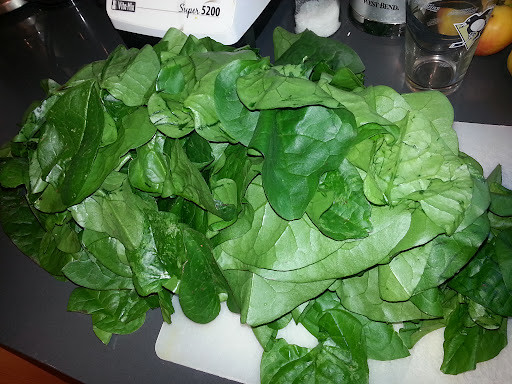 Malabar Spinach - Before Blanching