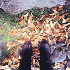 Autumn leaves are yellow, stones are grey, boots are black and somehow we still have green grass... #azstagram #azerbaijan #autumn #sheki #leaves #me #fromwhereiam #fromwhereistand #stones #colors #businesstrip