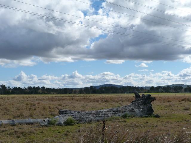 Canungra