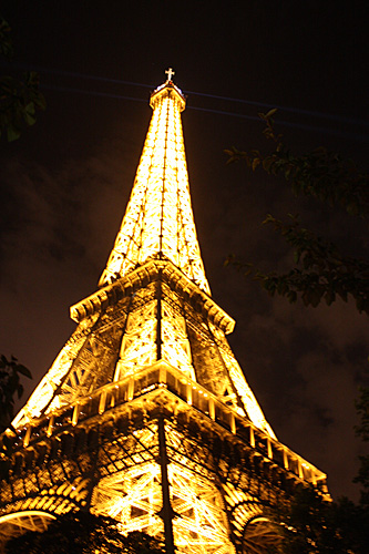 Eiffel-Tower-Night-dark-tree-shadow