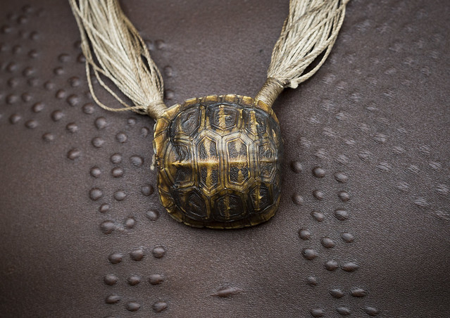 Turtle shell as necklace on scarifications suri tribe man for Real tortoise shell jewelry