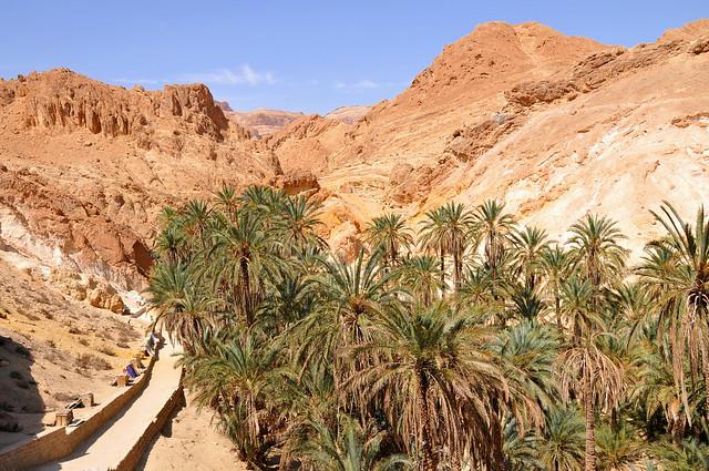 Las maravillas del desierto del Sahara 7849895068_ed10e42a58_z