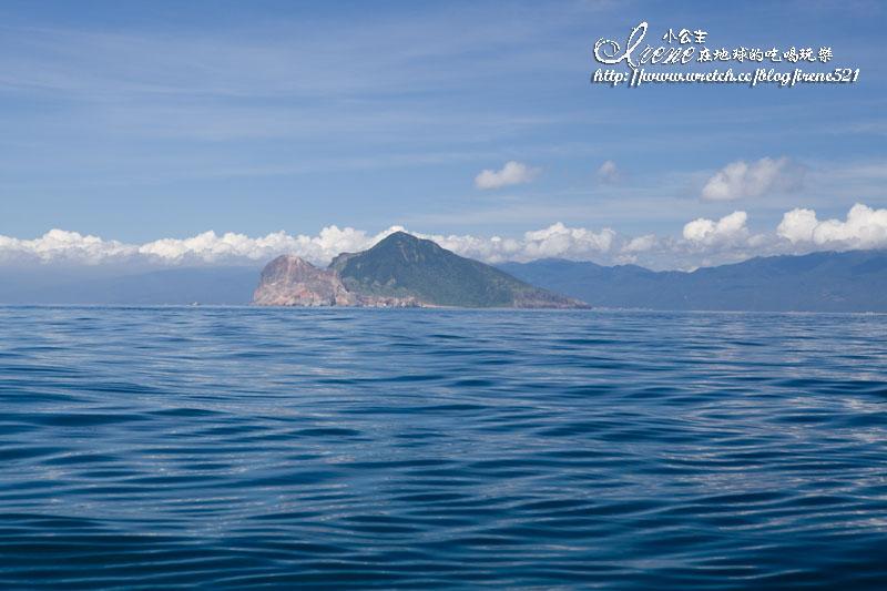 賞鯨+繞島+登龜山島