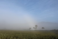 白い虹 尾瀬ヶ原 見晴