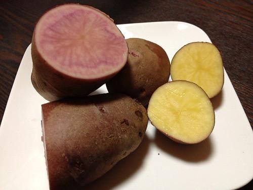 ジャガイモ2種@めぐみの郷-05