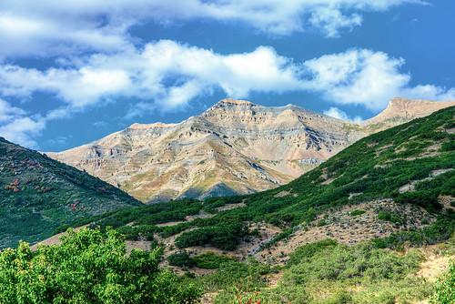 light summer mountain color fall utah raw day nef cloudy timpanogos wilderness hdr 1xp nikond800 nikkorafs70200mmf28edvrii