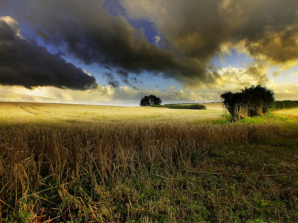Landscape Photos by Eric Goncalves 7