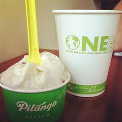 meal(0.0), breakfast(0.0), coconut(0.0), drink(0.0), frozen yogurt(0.0), milkshake(0.0), ice cream(1.0), whipped cream(1.0), produce(1.0), food(1.0), dish(1.0), gelato(1.0), dairy product(1.0), dessert(1.0), cream(1.0),