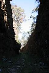 120901-1004.29__Cave Creek Bushwalk
