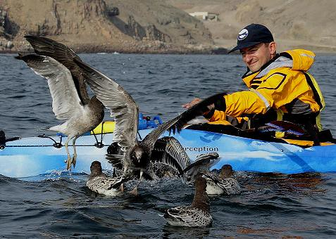 Sea kayaking in Peru with Nature Expeditions 16
