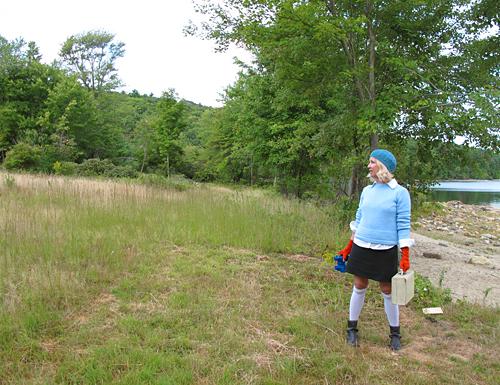 Fiery Searcher, Meadow