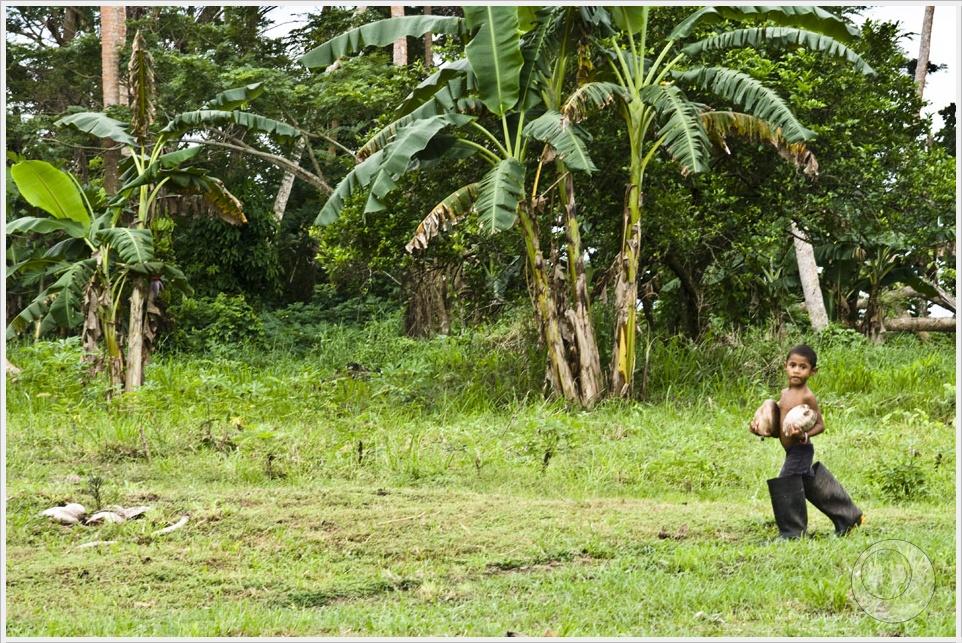 2012 06 22_Magda i Tomek Dookola Swiata_Fiji-Nawi_DSC_0013