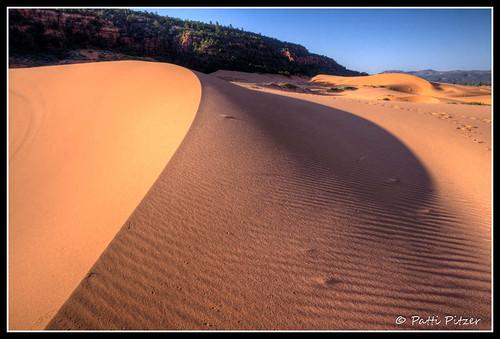 utah sand unitedstates tracks ripples hdr kanab sanddunes coralpinksanddunes hdrlandscape