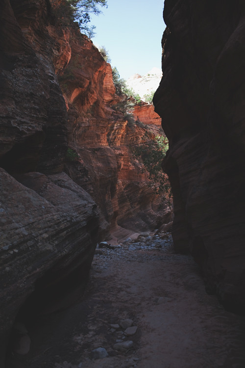 zion np