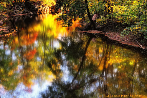 sunset usa tree water reflections river landscape virginia nikon fallcolor fallcolors loudouncounty nohdrhere tomlussier landscapespec2013