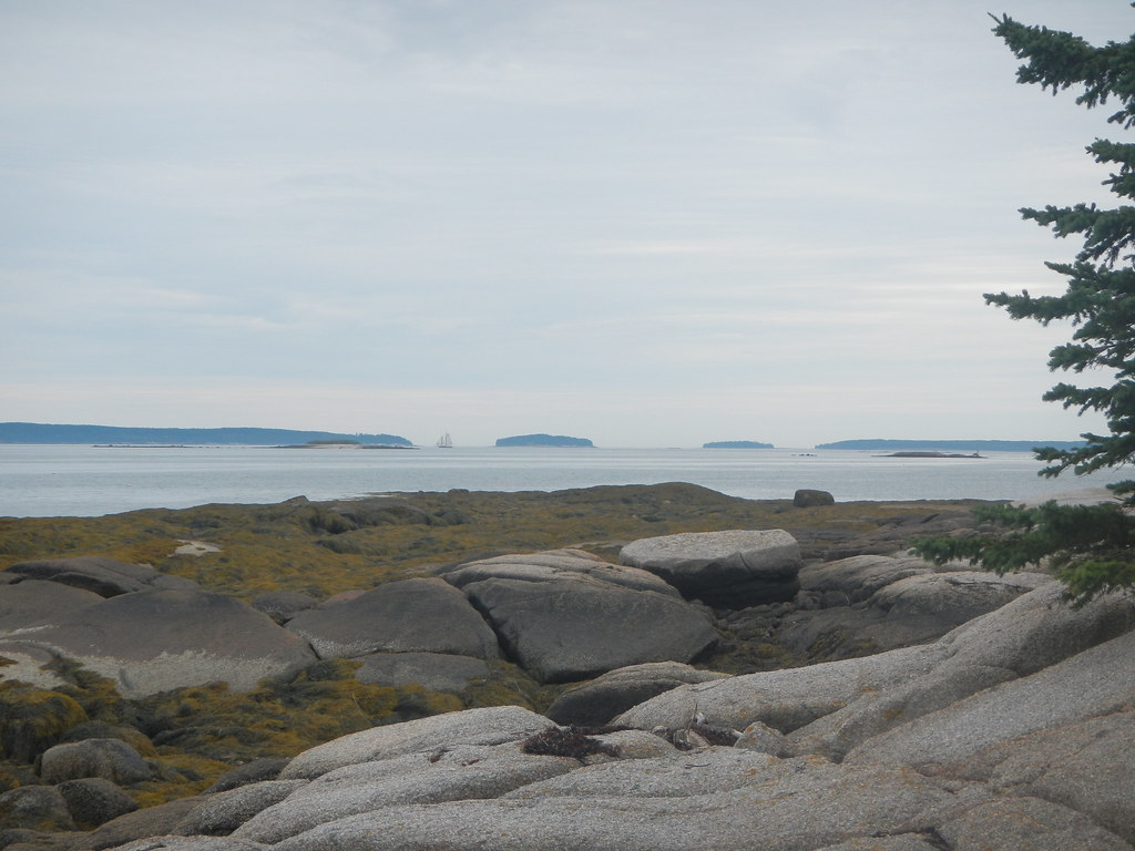 Campbell Island Hancock County Maine Tripcarta