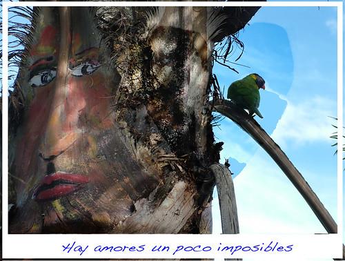 Palmeritas  y corazones,art interventions / ff mendoza au by FFMENDOZA -AUSTRALIA