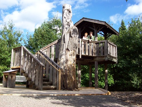 Arboretum tree house