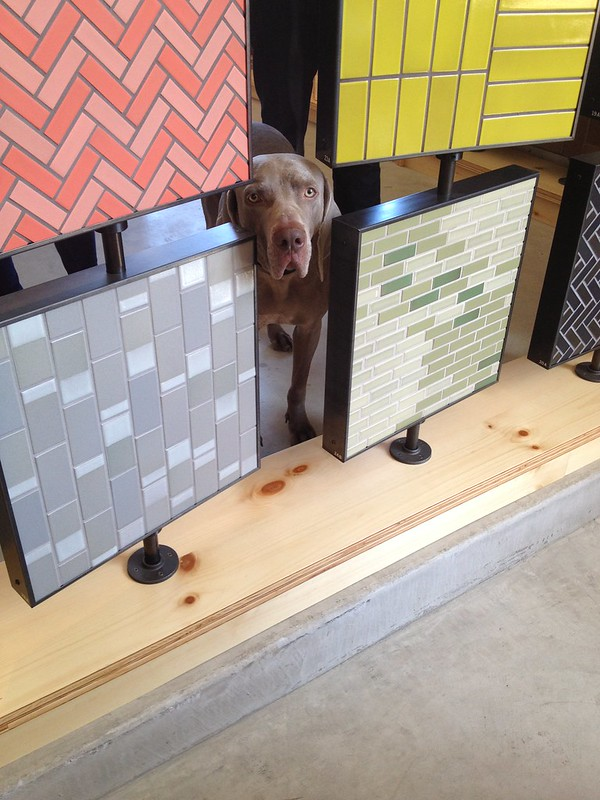 Purdy creature + tiles at Heath Ceramics new SF showroom
