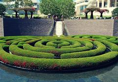 backyard(0.0), outdoor structure(0.0), fountain(0.0), courtyard(1.0), botanical garden(1.0), shrub(1.0), flower(1.0), garden(1.0), water feature(1.0), grass(1.0), labyrinth(1.0), yard(1.0), green(1.0), landscaping(1.0), lawn(1.0),