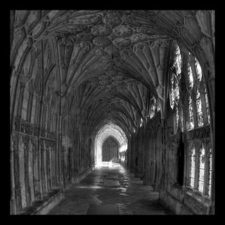 In the cloisters of Gloucester