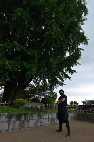 2012夏日大作戰 - 熊本 - 熊本城 (8)
