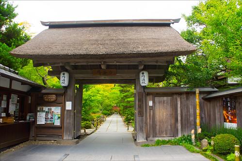 08082012TohokuD7_Matsushima-118