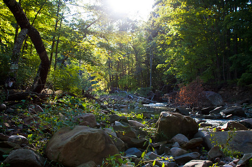 river-rocks