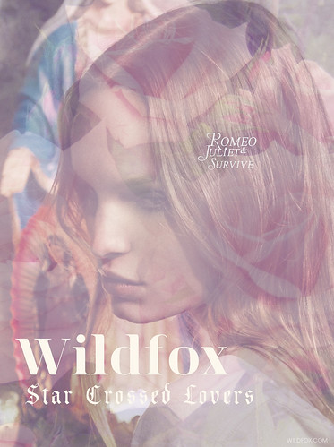 STAR%20CROSSED%20WILDFOX-1