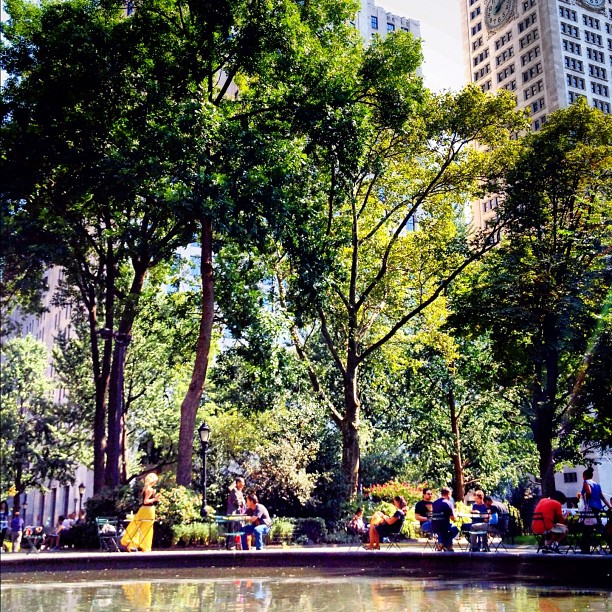 Madison Square Park #walkingtoworktoday