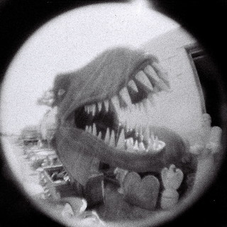 Fisheye Baby 110: Dinosaur skeletons in the closet