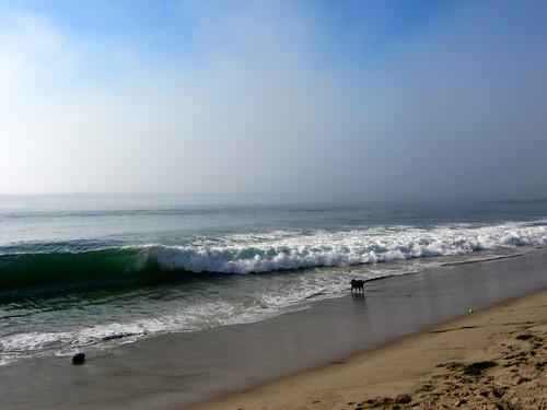 surf kicks up