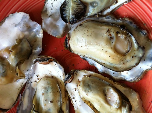 Oregon coast oysters fresh off the grill