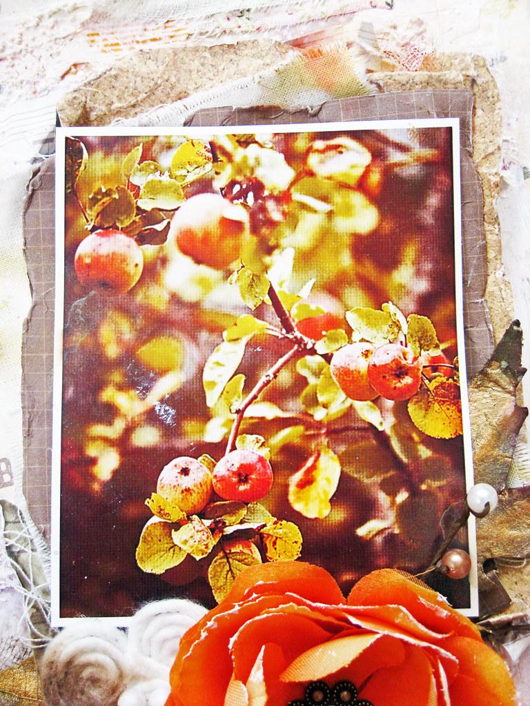 #128_Apples - 2