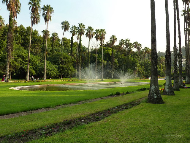 Le jardin d essai alger flickr photo sharing for Jardin d essai alger