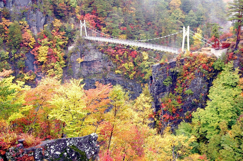 瀬戸合峡わたらっしゃい吊橋