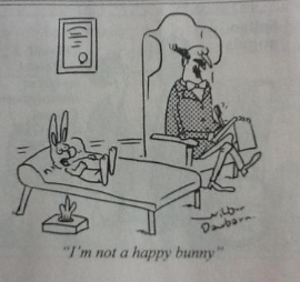 """Doctor, I'm not a happy bunny"""