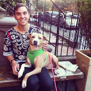 Look who #ellethedog found  - @jamesbridle! Brooklyn
