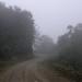 Neblina en la sierra en el camino entre San Juan Juquila Mixes y San Pedro Ocotepec, Región Mixes, Oaxaca, Mexico por Lon&Queta