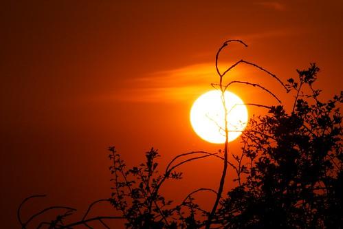 sunset sun tramonto sole
