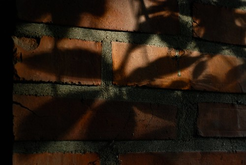 sunset shadow red house brick field leaves sunshine suomi finland leaf shadows dof depthoffield porch mick depth dunne mickdunne
