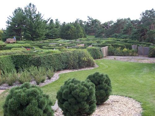 Arboretum hedge maze