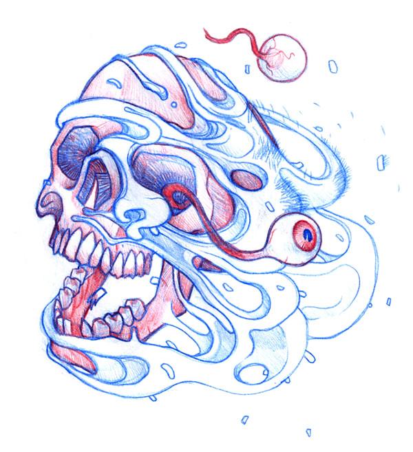Boceto Calavera/Skull