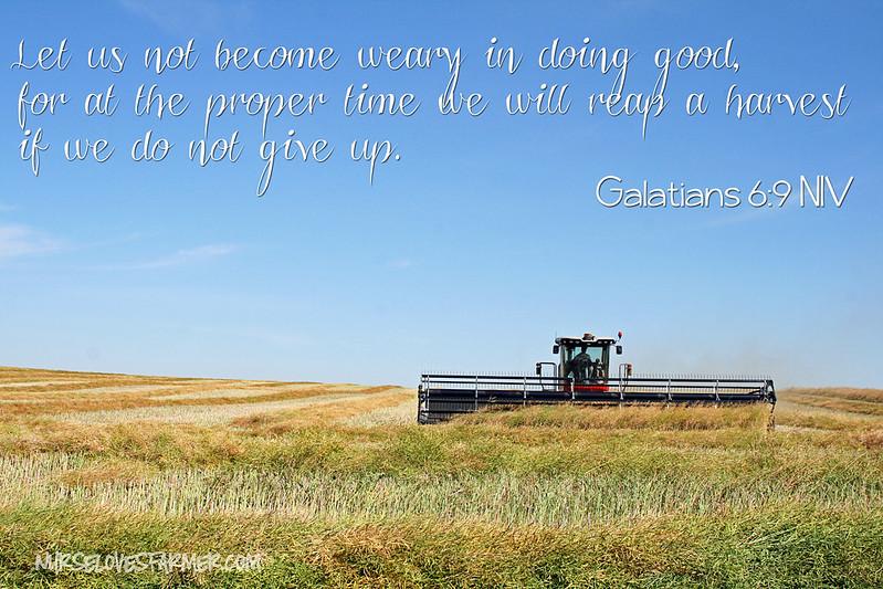 Harvest Scripture