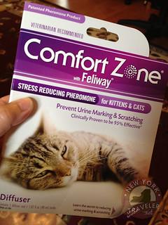 comfort1