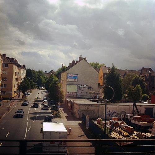 photo 3 (3)