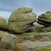 Small photo of Wain Stones